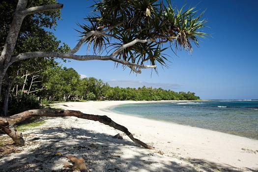 Главният плаж Obzor-beach3041432